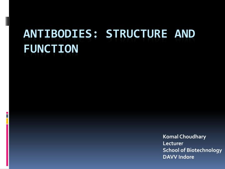 Antibodies structure and function