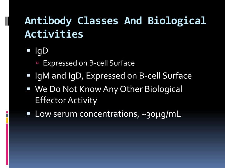 Antibody Classes And Biological Activities