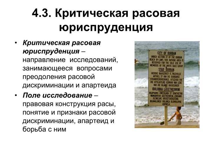 4.3. Критическая расовая юриспруденция