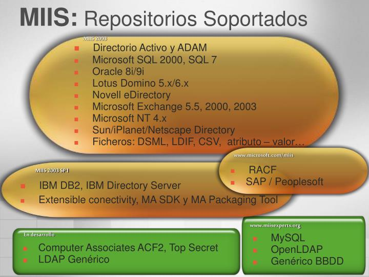 www.miisexperts.org