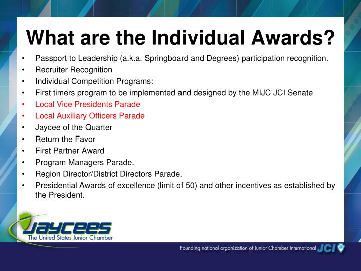 What are the Individual Awards?