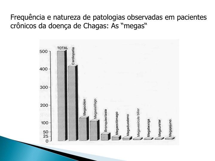 Frequência e natureza de patologias observadas em pacientes