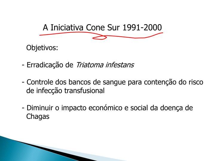 A Iniciativa Cone Sur 1991-2000
