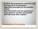 possessive pronouns2