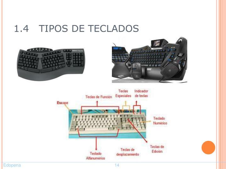 1.4   TIPOS DE TECLADOS