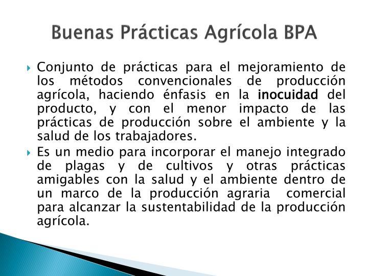 Buenas Prácticas Agrícola BPA