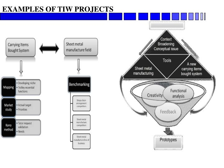 EXAMPLES OF TIW PROJECTS