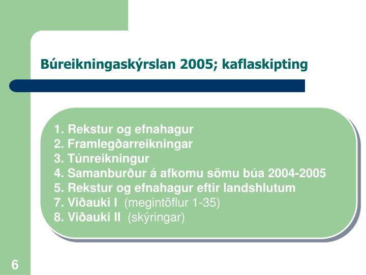 Búreikningaskýrslan 2005; kaflaskipting
