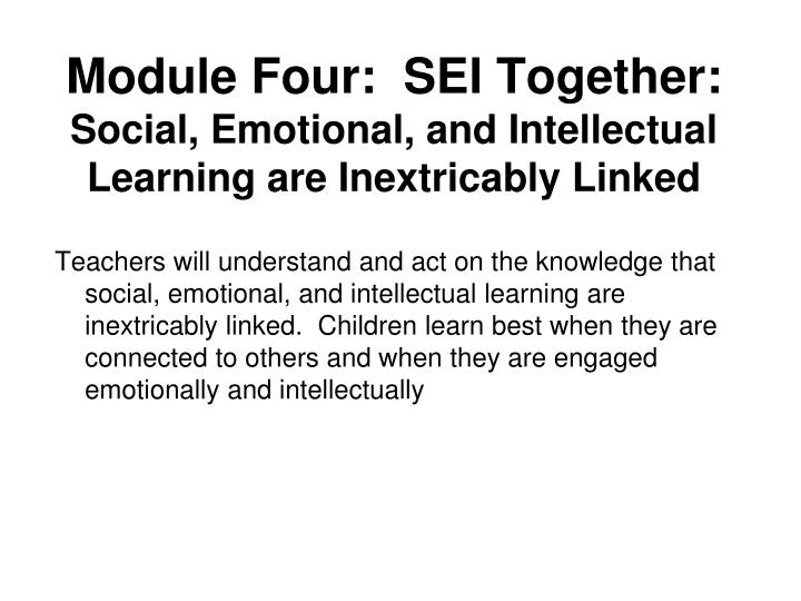 Module Four:  SEI Together: