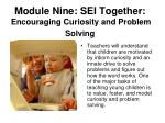 module nine sei together encouraging curiosity and problem solving