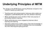 underlying principles of mitm