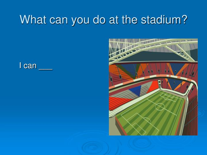 What can you do at the stadium?