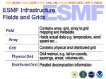 esmf infrastructure fields and grids