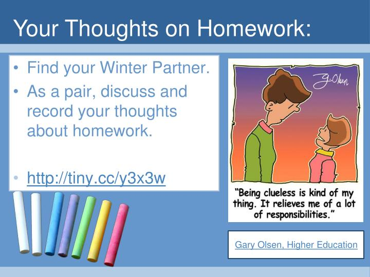 Your Thoughts on Homework:
