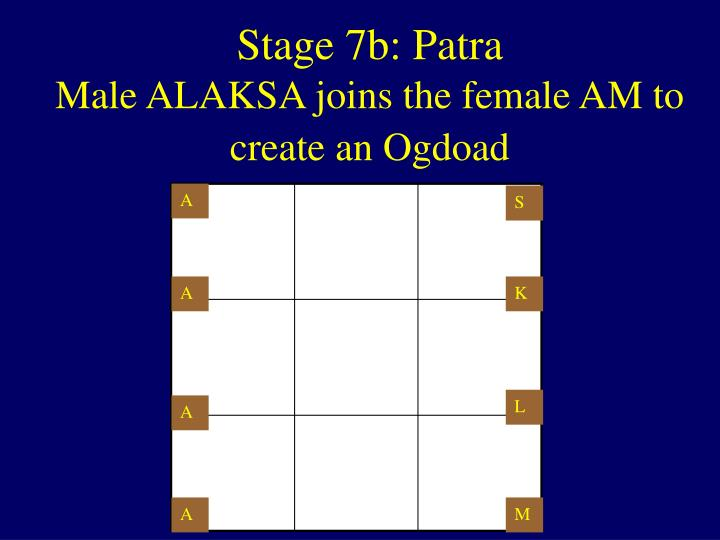 Stage 7b: Patra