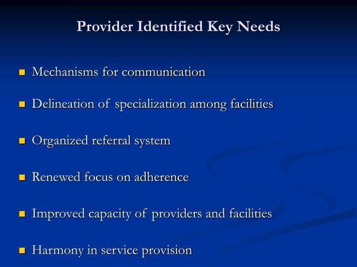 Provider Identified Key Needs
