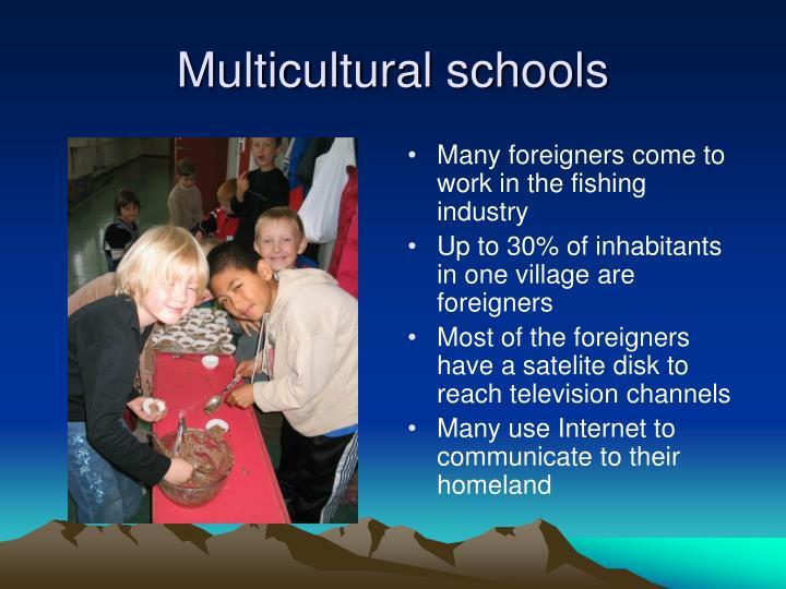 Multicultural schools