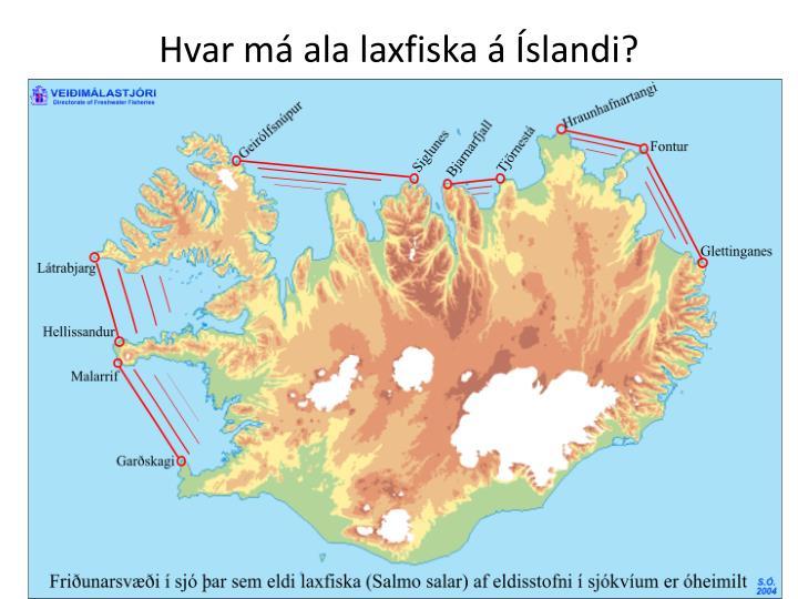 Hvar má ala laxfiska á Íslandi?