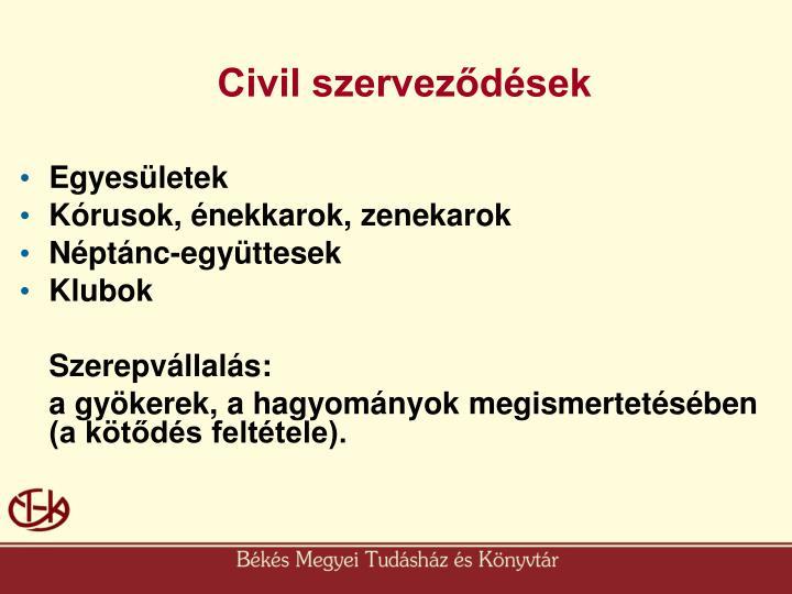 Civil szerveződések
