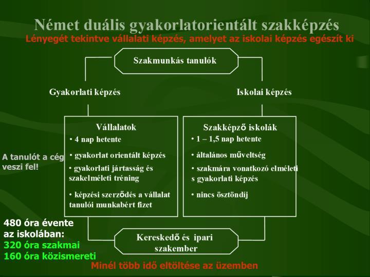 Lényegét tekintve vállalati képzés, amelyet az iskolai képzés egészít ki