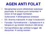 agen anti folat