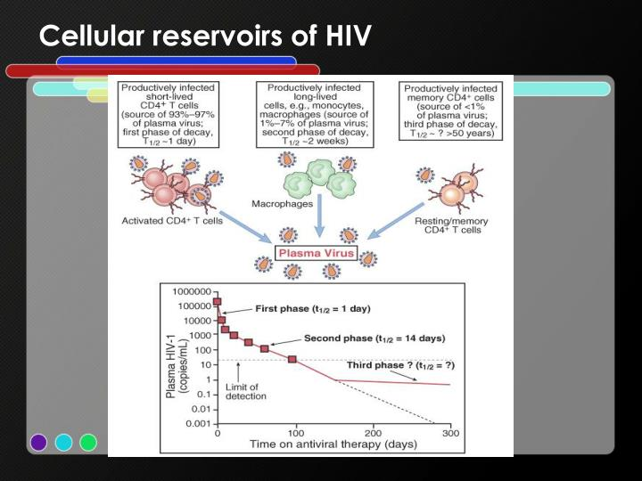 Cellular reservoirs of HIV