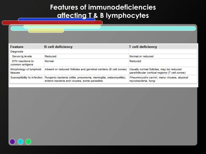 Features of immunodeficiencies
