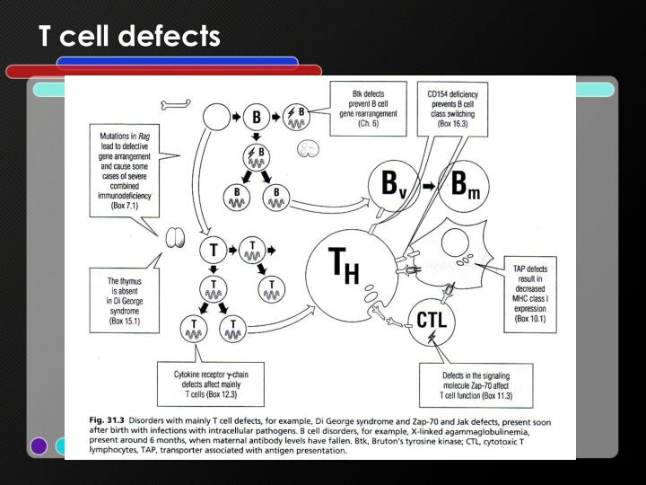 T cell defects