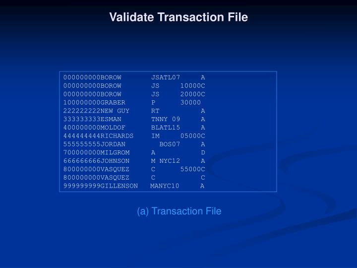 Validate Transaction File