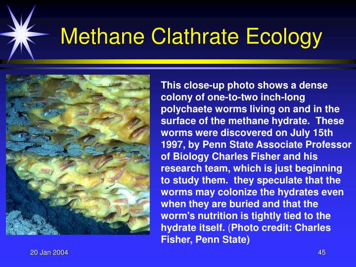 Methane Clathrate Ecology