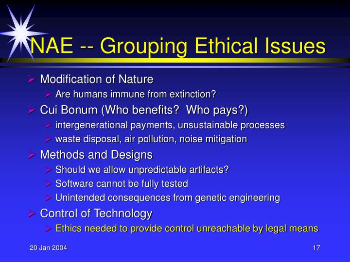 NAE -- Grouping Ethical Issues