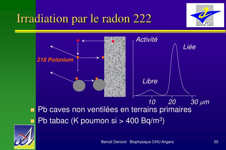 Irradiation par le radon 222