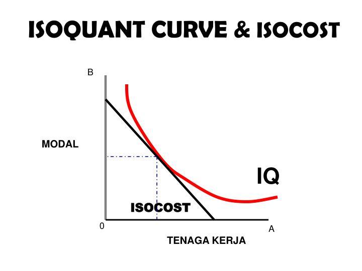 ISOQUANT CURVE &