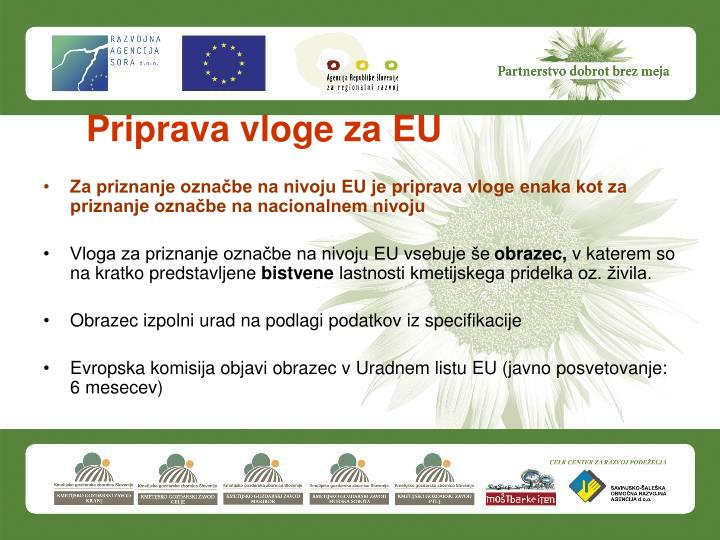 Priprava vloge za EU