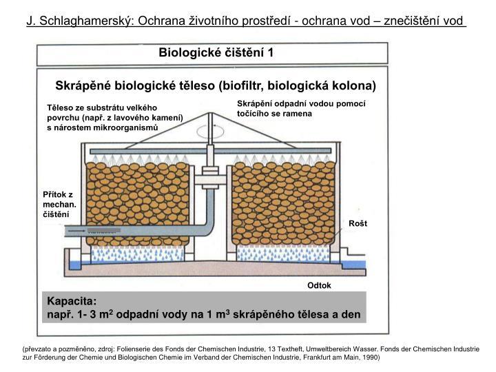 Biologické čištění 1
