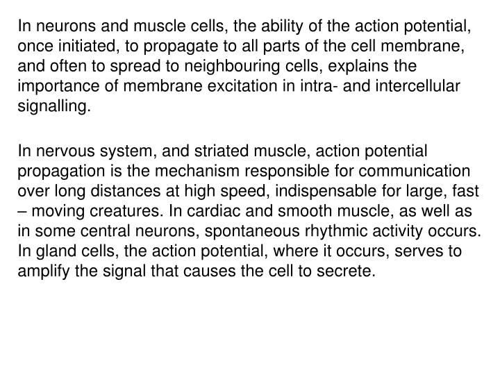 In neurons and muscle cells, the ability of the action potential, once initiated, to propagate to all parts of the cell membrane, and often to spread to neighbouring cells, explains the importance of membrane excitation in intra- and intercellular signalling.