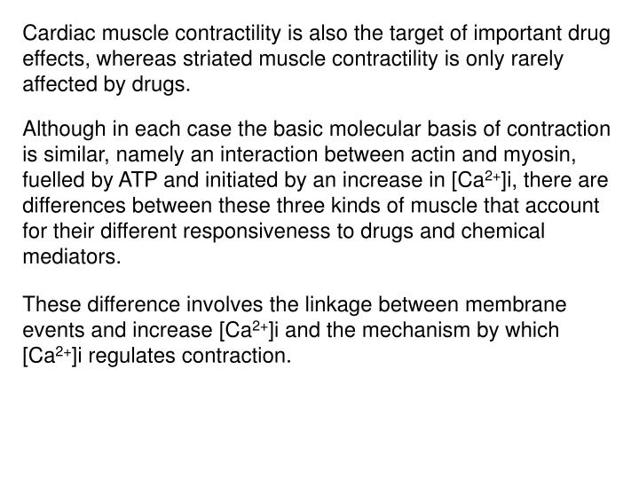 Cardiac muscle contractility is also the target of important drug effects, whereas striated muscle contractility is only rarely affected by drugs.