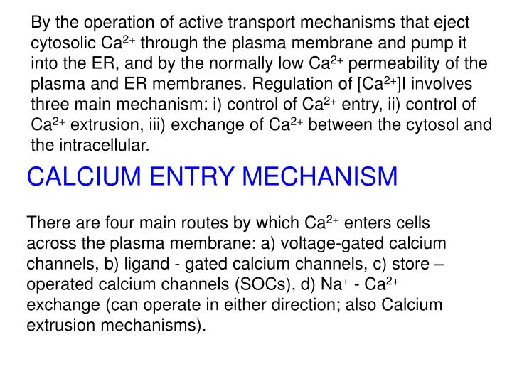 By the operation of active transport mechanisms that eject cytosolic Ca