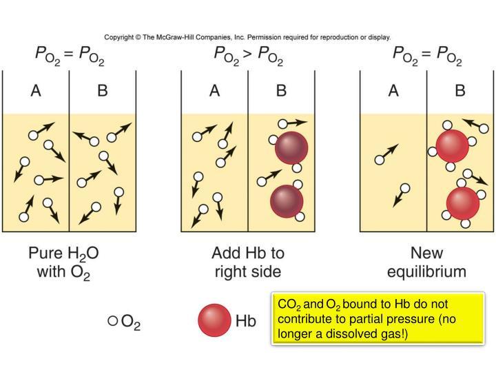 Figure 13.27