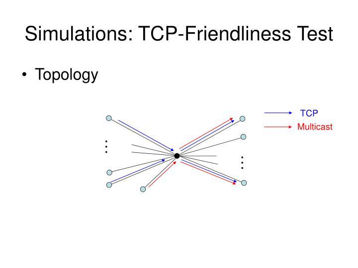 Simulations: TCP-Friendliness Test