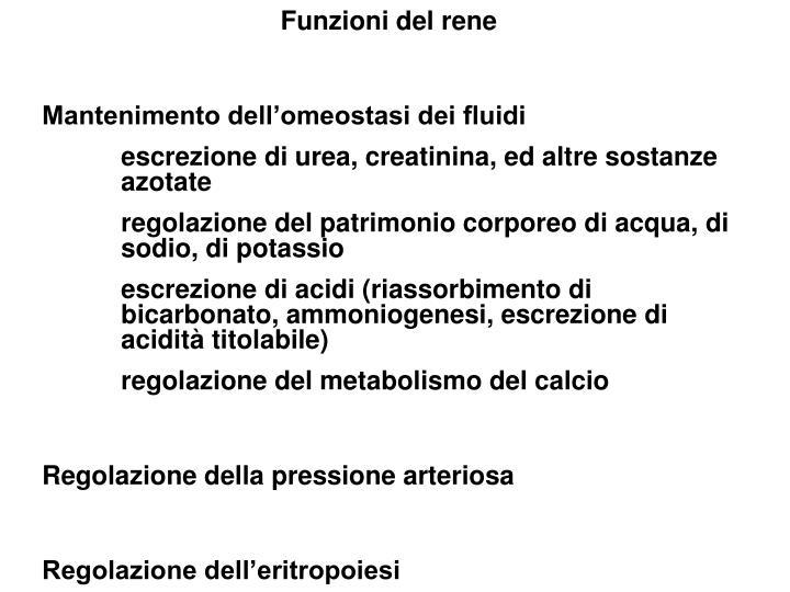 Funzioni del rene