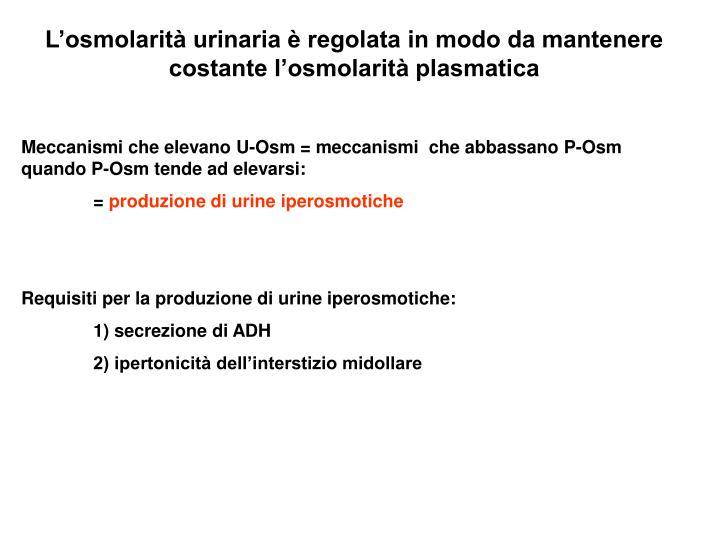 L'osmolarità urinaria è regolata in modo da mantenere costante l'osmolarità plasmatica