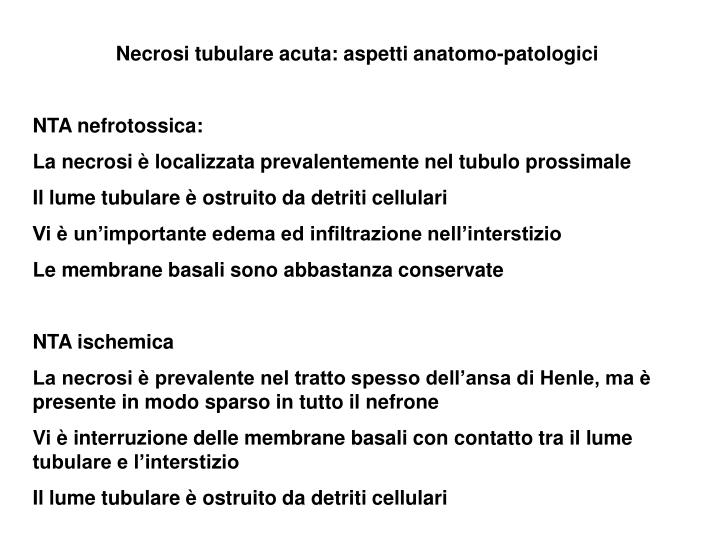Necrosi tubulare acuta: aspetti anatomo-patologici