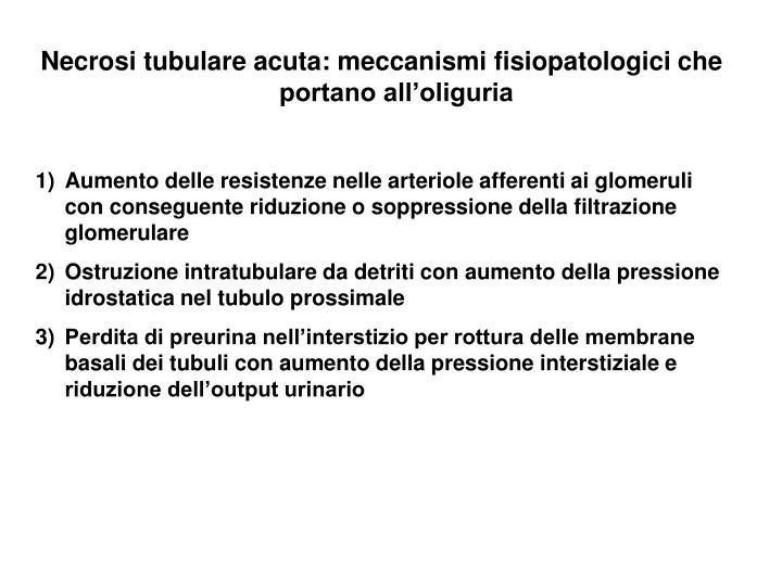 Necrosi tubulare acuta: meccanismi fisiopatologici che portano all'oliguria
