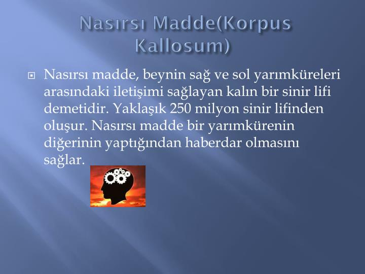 Nasırsı Madde(Korpus Kallosum)