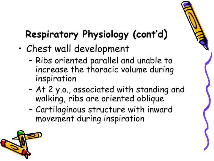 Respiratory Physiology (cont'd