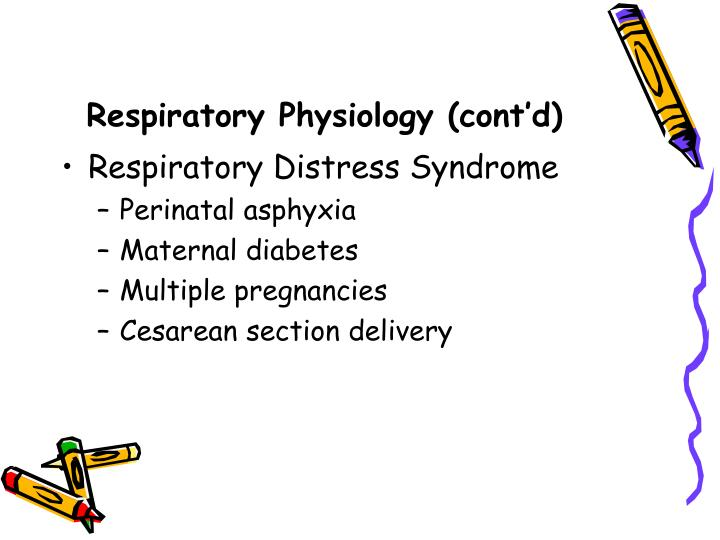 Respiratory Physiology (cont'd)