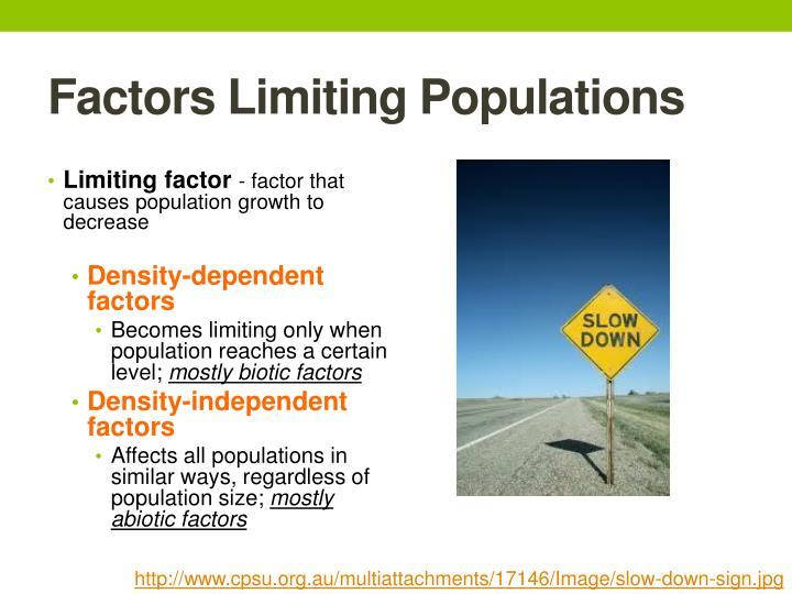 PPT - Population Dynamics PowerPoint Presentation - ID:4342008