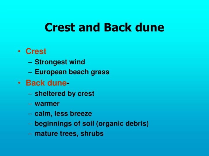 Crest and Back dune
