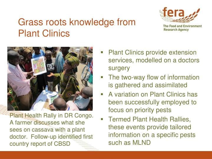 Grass roots knowledge from Plant Clinics